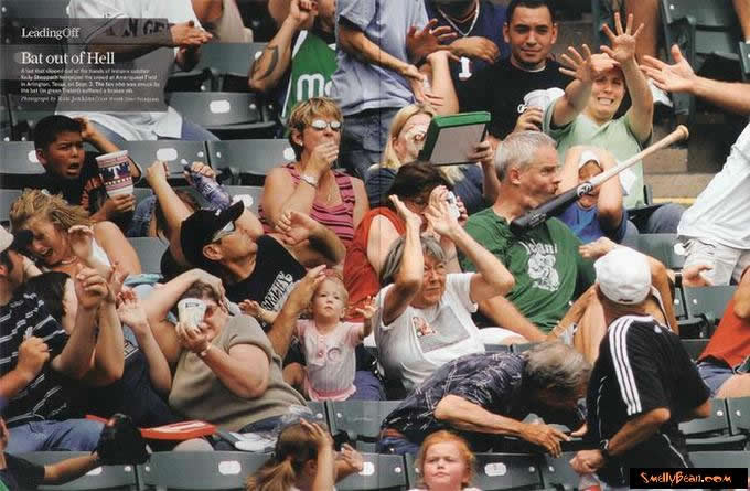 baseball_wwwschneeseicherch