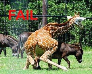 fail03_wwwschneeseicherch