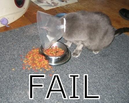 fail11_wwwschneeseicherch