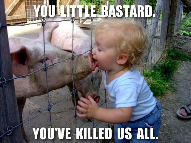 schweinegrippe_wwwschneeseicherch