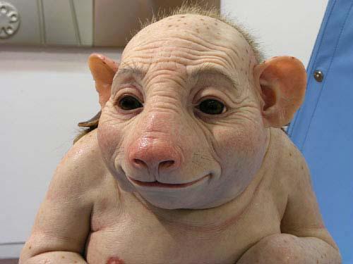 schweinegrippenebenwirkungen_wwwschneeseicherch