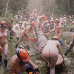 Kettensägen-Kurs